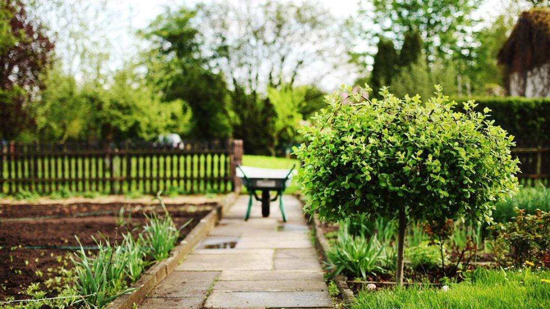 Współczesna architektura ogrodowa